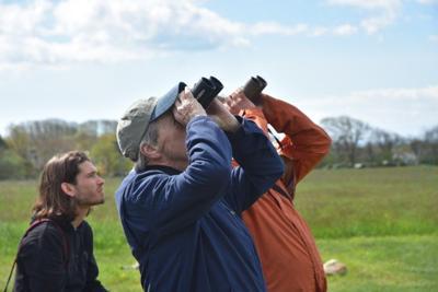 a12 outdoor story birdwatching.jpg