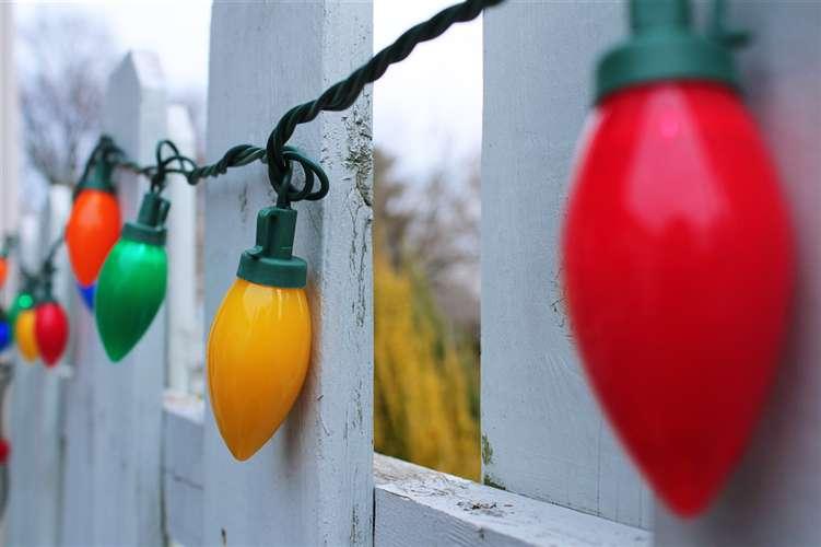 26-Haley Klinger Deck The Fence.jpg