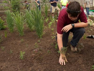 Mount Joy volunteers build rain garden to reduce pollution