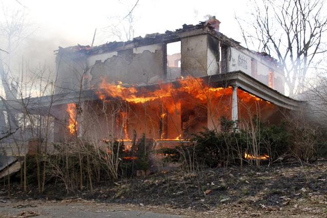 Brush Fire9
