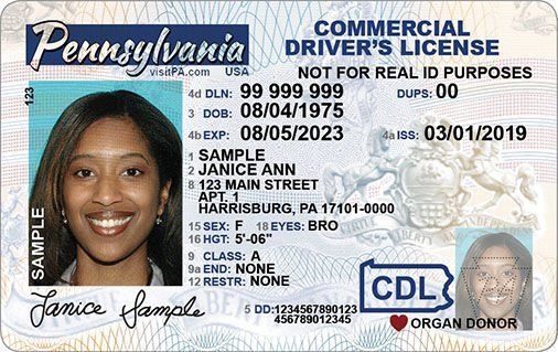 Standard-Issue ID 1