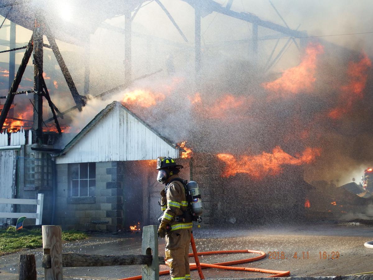 1 bull, 100 chicks die in $350k barn fire at Verdant View ...