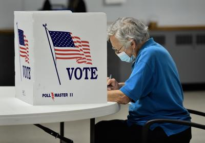 LANC Voting 2.jpg