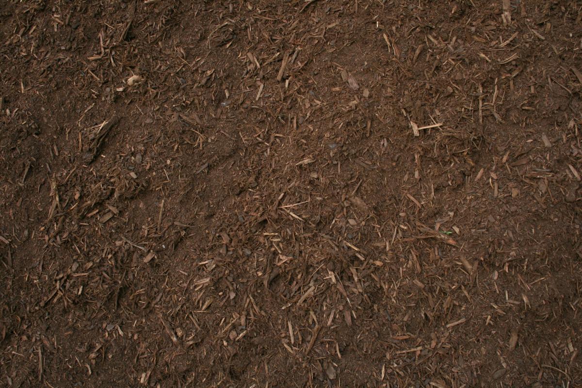 bark mulch.jpg