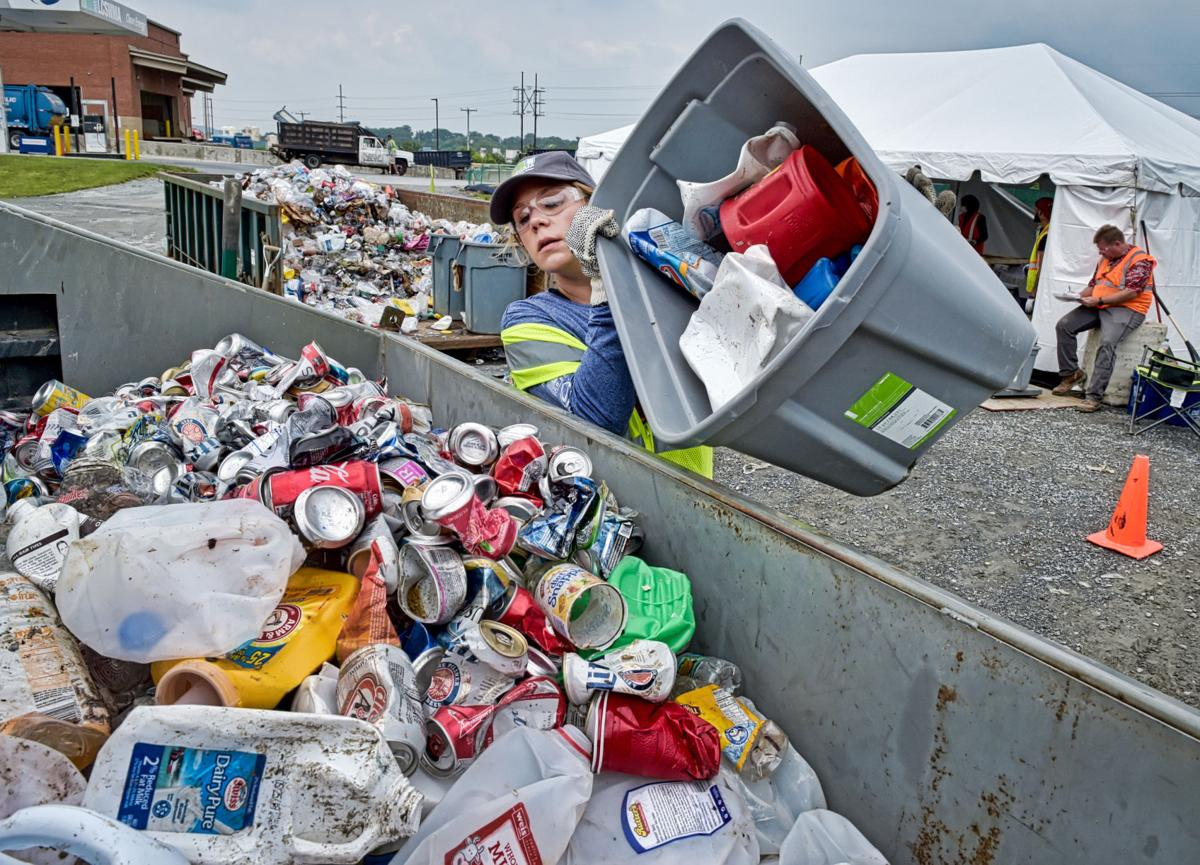 recycling audit 6