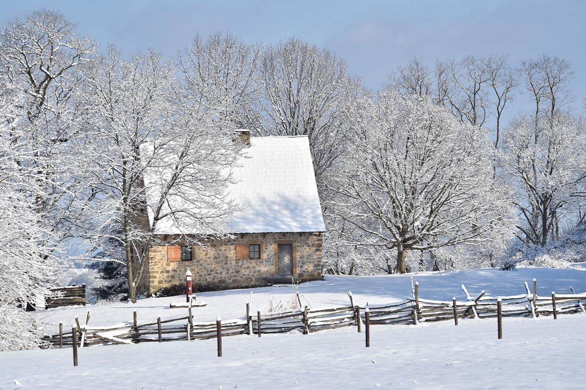 Monday Snow 4.jpg