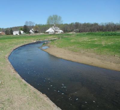 stream restoration chesapeake logperch