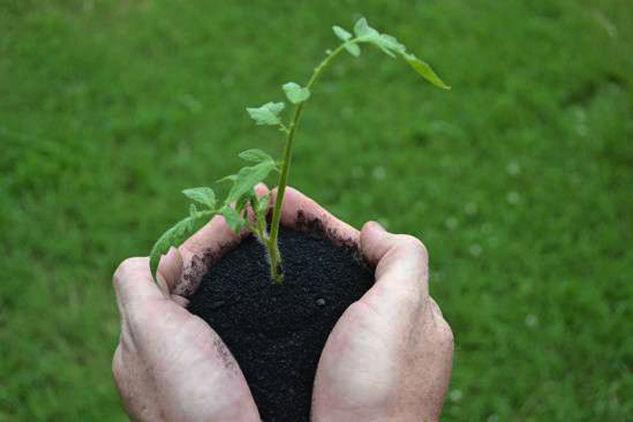 Ephrata biochar plant