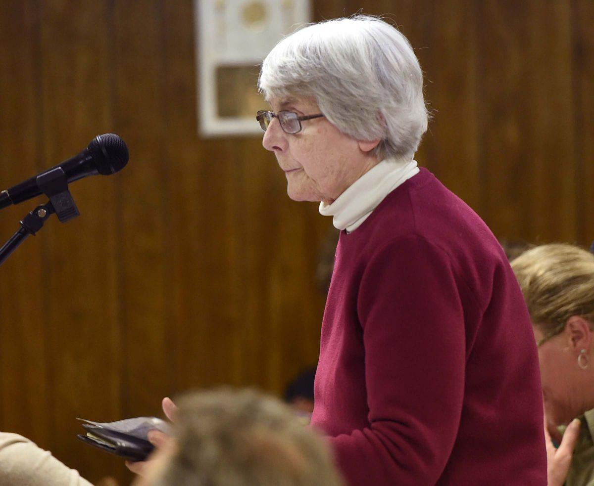 Public hearing on Perdue's Soy Plant3.jpg