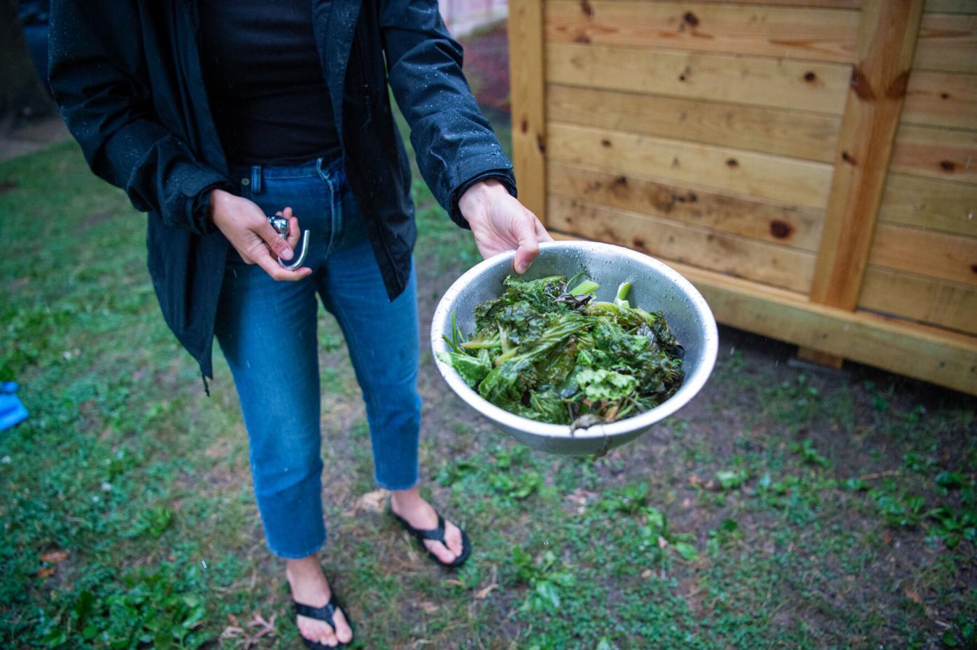 Compost bin-01.jpg
