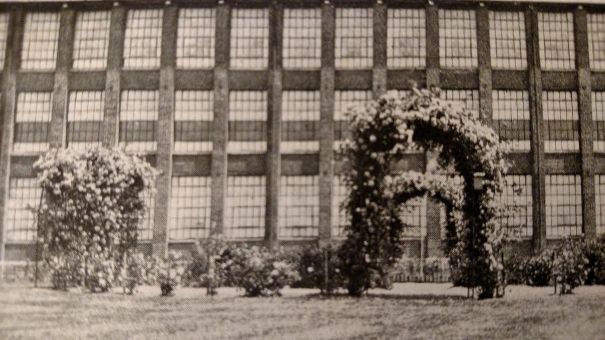 Stehli History Rose Arbors