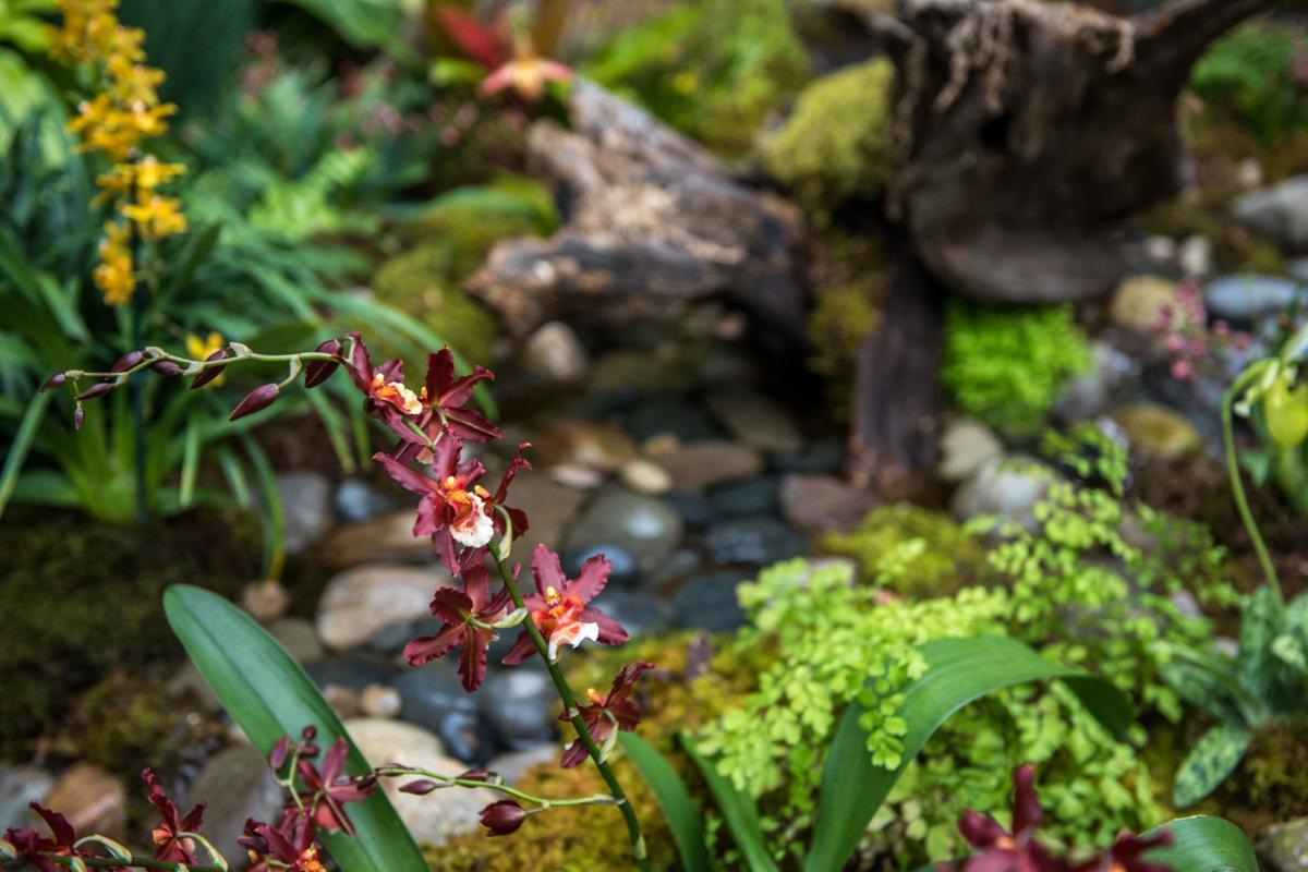 Pennsylvania Garden Tops 10 Best Botanical Gardens List Home