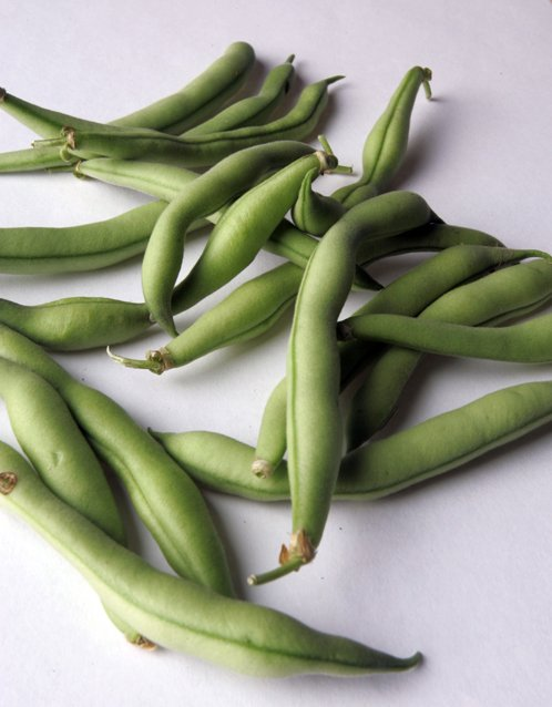poem snapping beans Snapping beans: by lisa parker snapping beansby lisa parker is a great example of how literary devices can be used in a poem to make that poem stronger for instance the diction in the snapping beans,poem is outstanding.