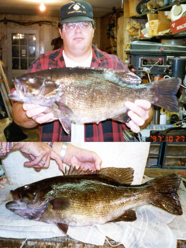Record-setting smallmouth bass caught in Berks County, 1997