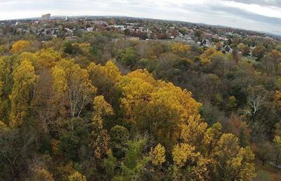 Fall foliage from Lancaster County Park
