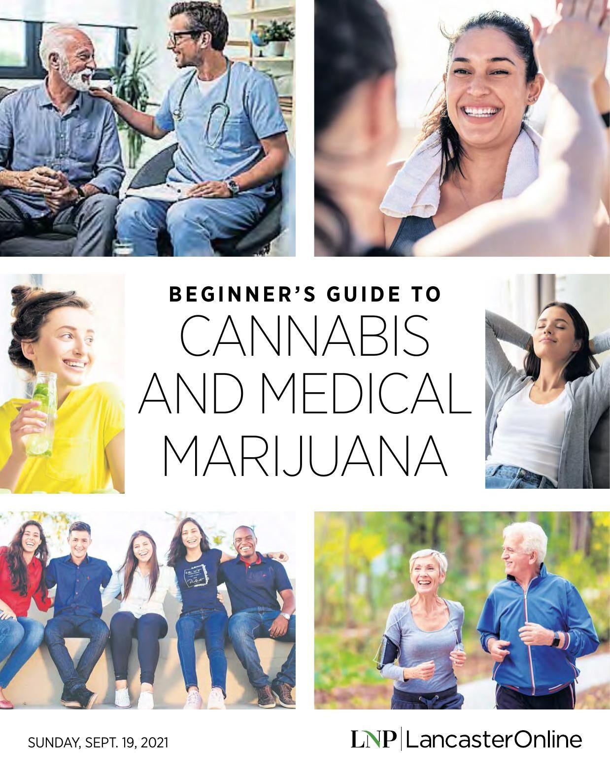 Beginner's Guide To Cannabis And Medical Marijuana