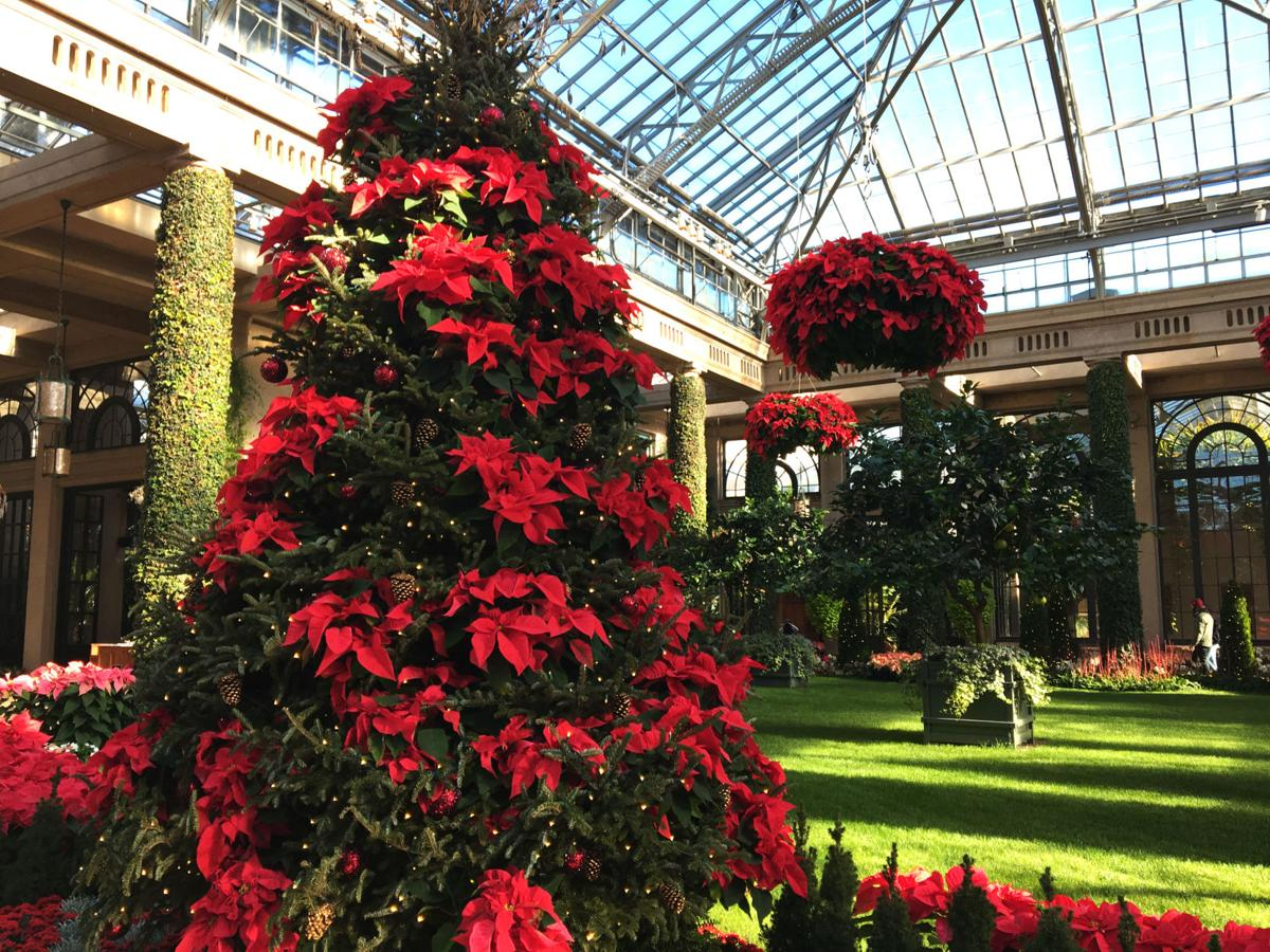 Longwood Gardens Is Growing A New Conservatory Will Be Its