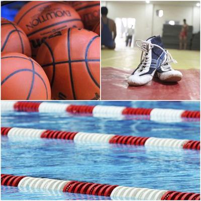 basketball swimming wrestling logo