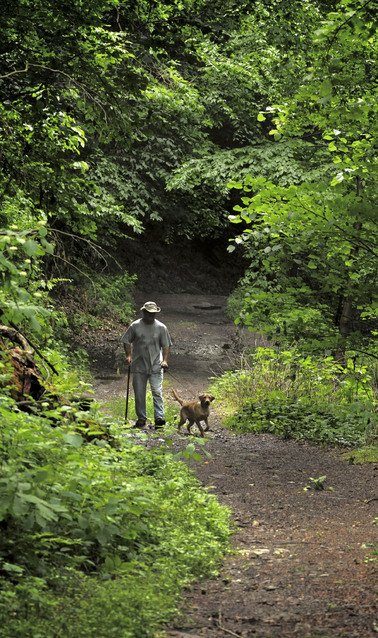 Hidden trail offers ever-changing panorama