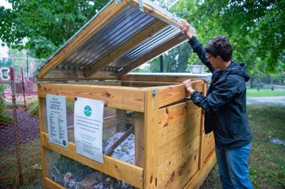Compost bin-05.jpg