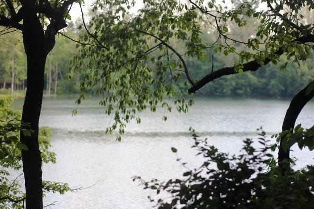 Explore Lake Grubb Nature Park