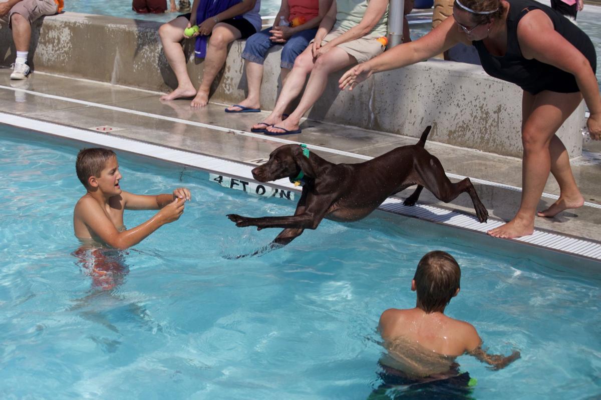 Ephrata Doggie Swim