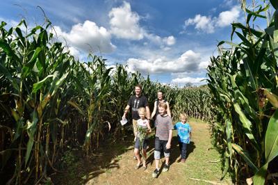 Corn Maze 1.jpg