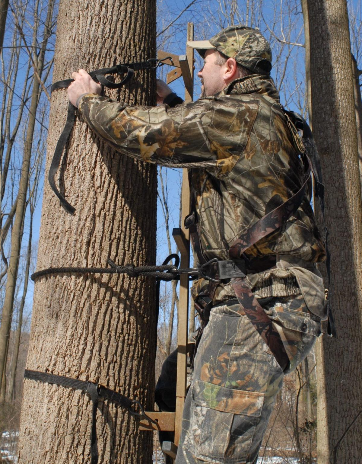 5 Tips For Safe Tree Stand Hanging Local News