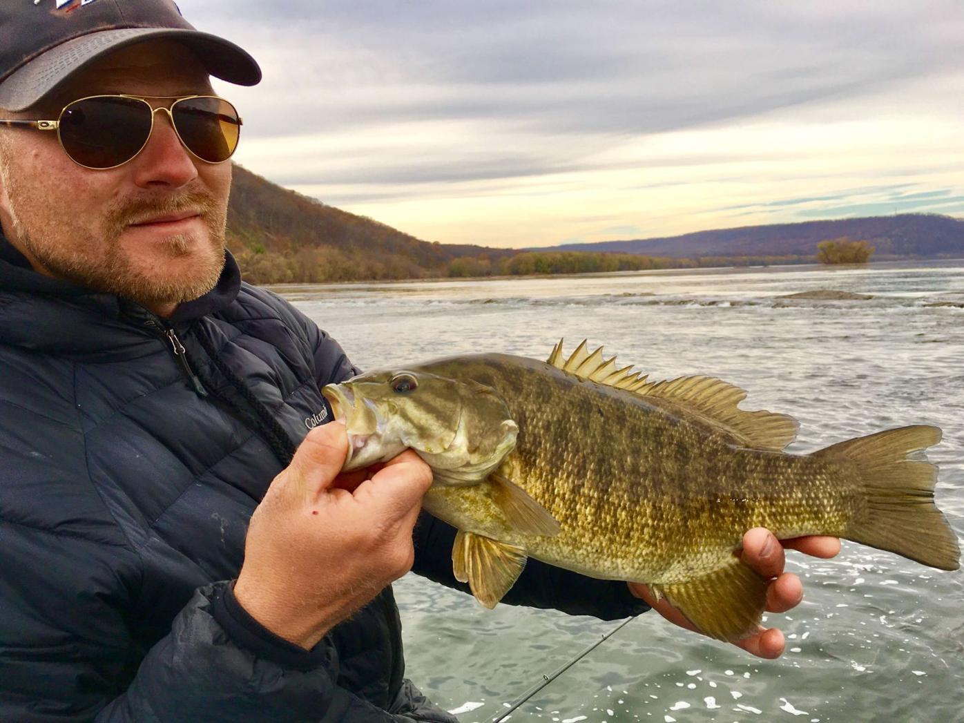 Susquehanna bass