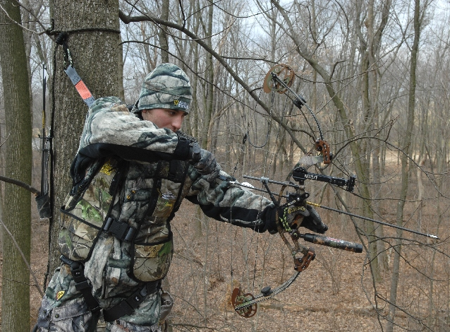 Safety and tree stands | Sports | lancasteronline com