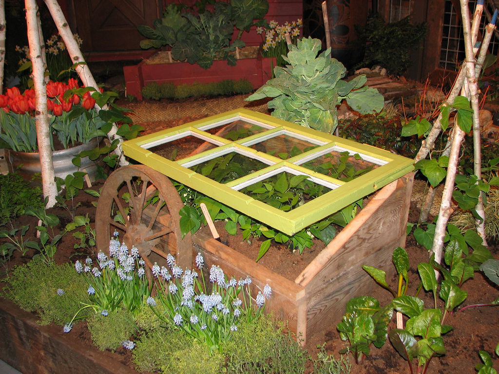 Stretch your garden harvest with a cold frame | Food + Living ...