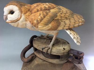 m15 art story Barn owl by Al Jordan.jpg
