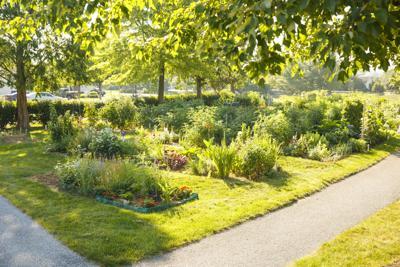 Garden Spot garden