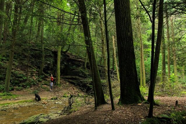 Tucquan Glen trail