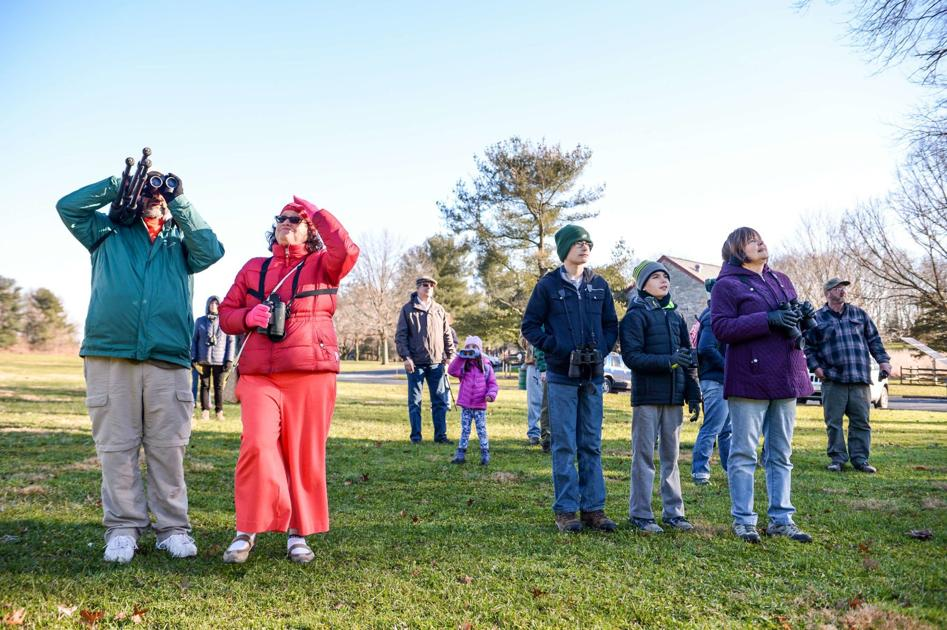 Volunteer Birdwatchers Of All Ages Fan Out Across Lancaster County