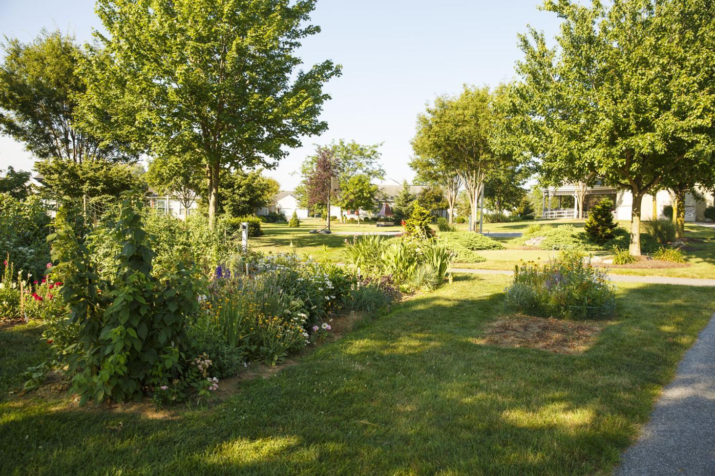 Garden Spot gardens