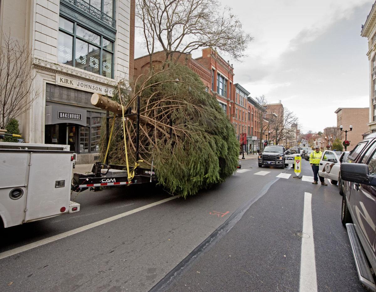 City Christmas Tree