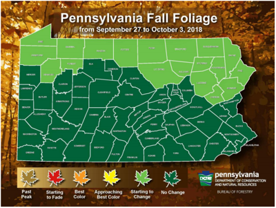 Still green: Pennsylvania issues first foliage report