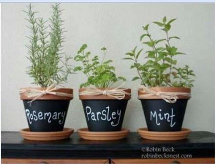 Herb Chalk   10 Attractive Hangouts For Your Herb Garden Home + Garden