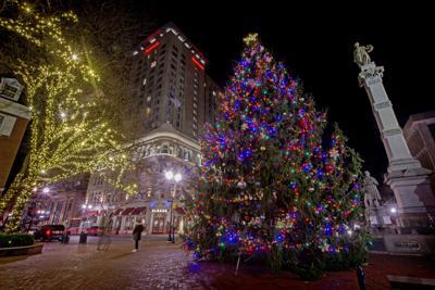 City tree lights