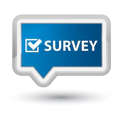 Survey,Icon