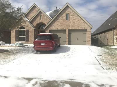 Former Bulletin editor Steve Kittey reounts Texas freeze