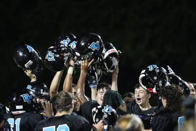 Panthers - Helmets