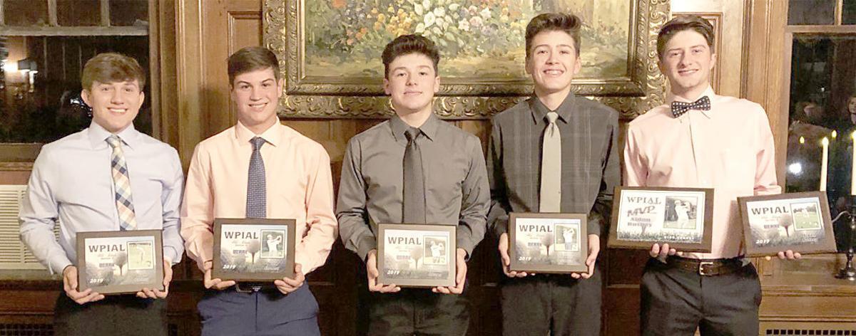 Five DA boys' golfers named All-Section