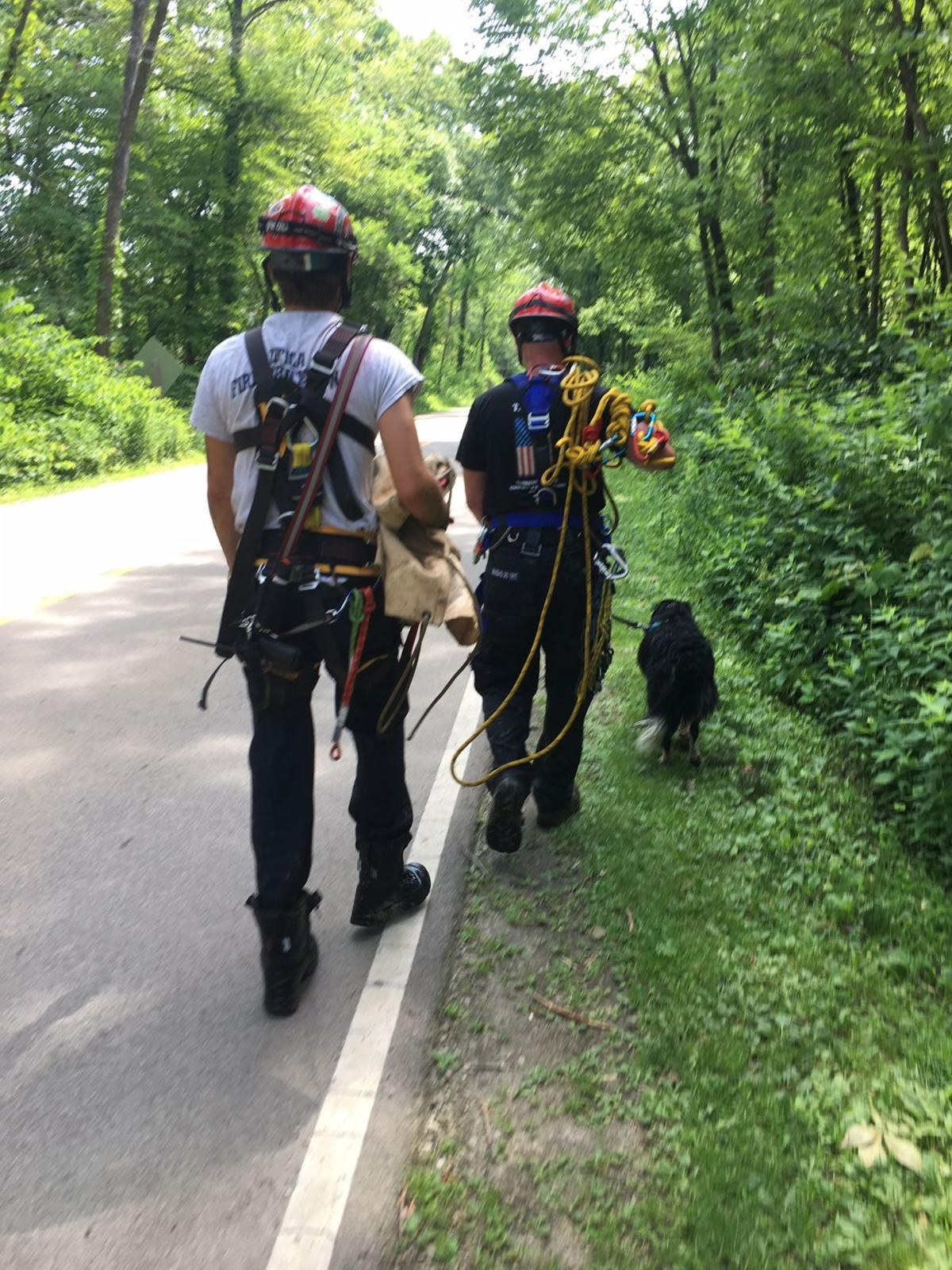 Dog rescued affer fall at St. Rock   photo courtesy of Sgt. Phil WIre