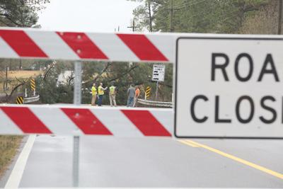 A tree fell on the bridge over Dry Creek on Highway 184, closing down the bridge and taking out power lines.jpg