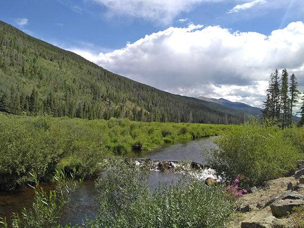Forest Service looks at feasibility study | Free Content - Leadville Herald Democrat
