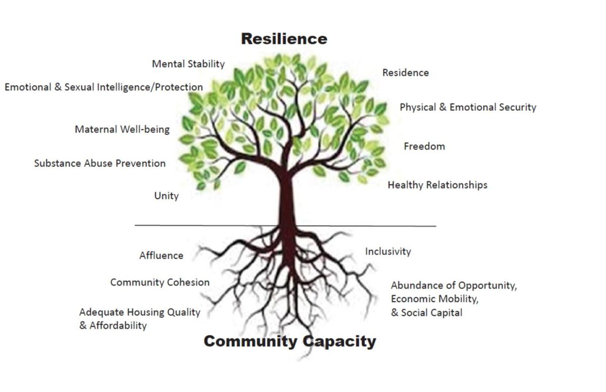 Resilience and Community Capacity Tree.jpg