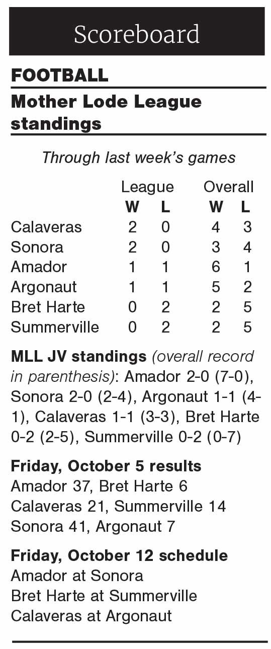 MLL football standings