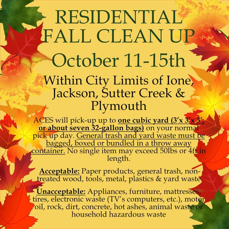 Residential Fall Clean Up